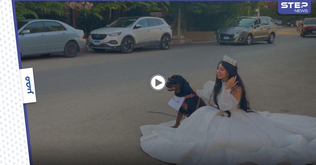 شابة مصرية معروفة تعلن زواجها من كلب بشكل رسمي وتنشر صور وفيديو الزفاف (فيديو)
