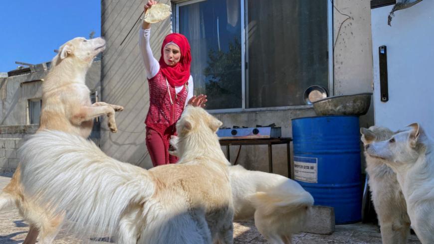 صبية سورية في دمشق تبيع ممتلكاتها لأجل الكلاب والقطط وتدعو السوريين للاستفادة من مشروعها الخاص (فيديو)